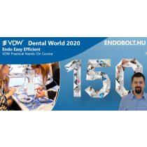 2020.10.10. -  Endo Easy Efficient - Dental World
