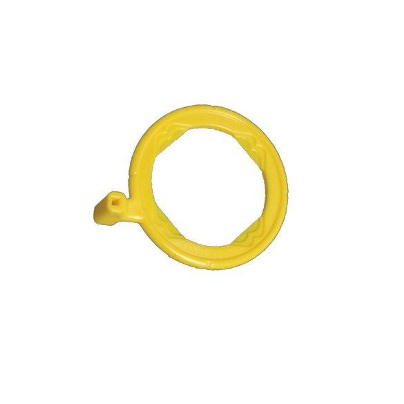 Rinn - XCP Posterior Ring